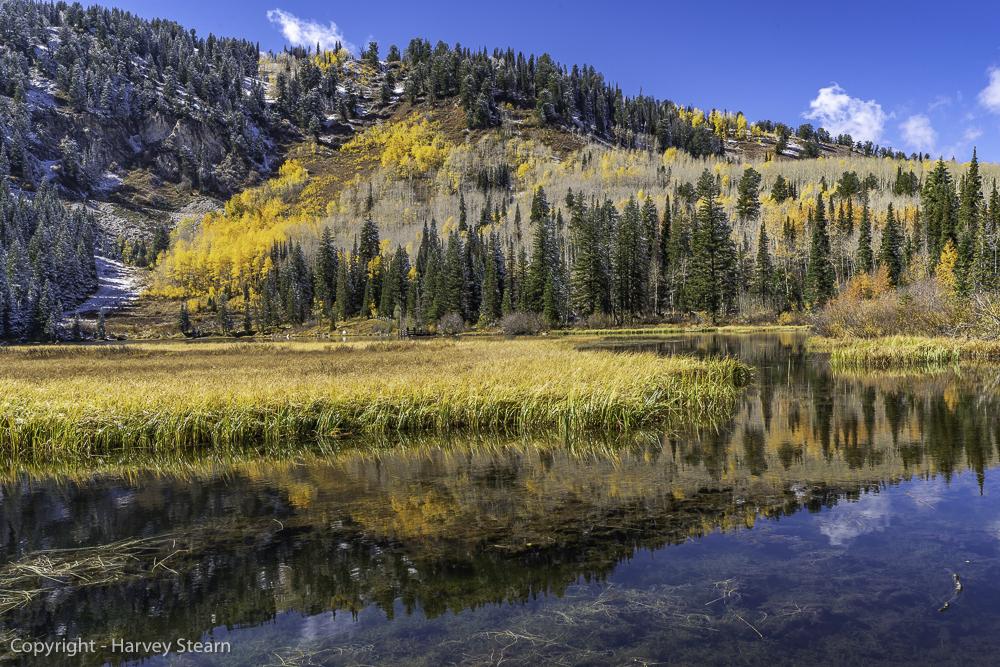 Silver Lake Reflections 2