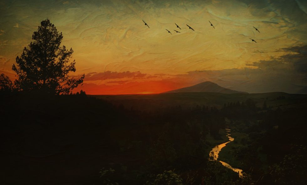 Artsy Palouse Sunset