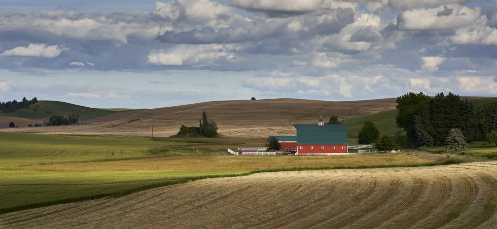 Red Barn In Palouse