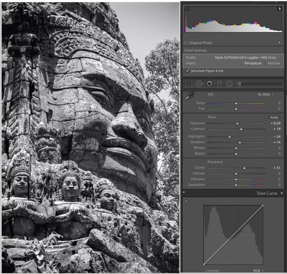 Figure 30-1. Angkor Stone Face – IGFS