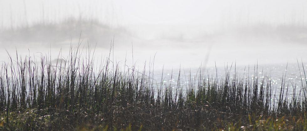 Fog on St Simons