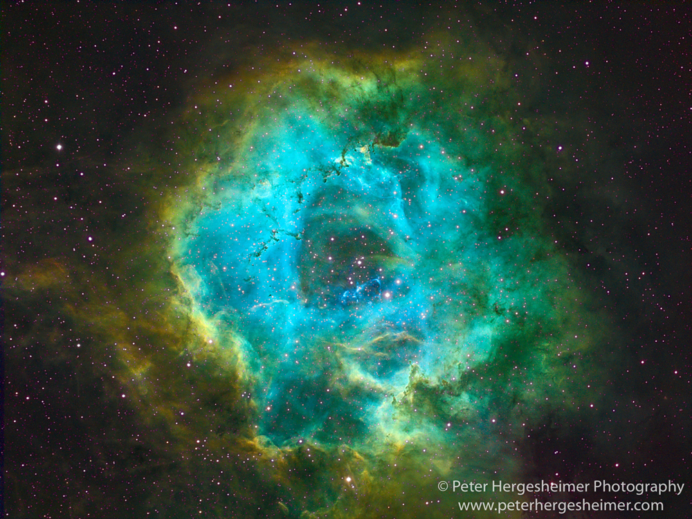 Narrowband image of the Rosette Nebula through an 80mm refractor telescope