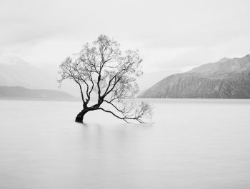 Using Mirrorless Cameras For Landscape Photography