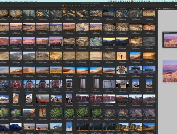 Phase One's Capture One 20 Is Released
