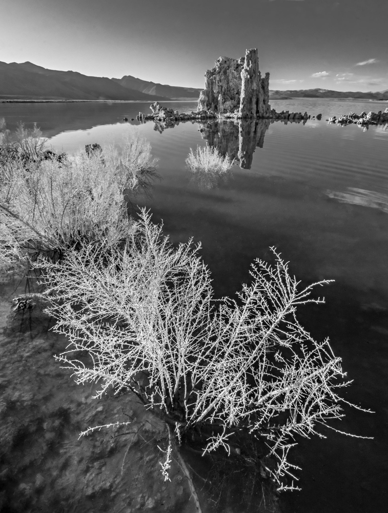Mono Lake.  Lee Vining, California