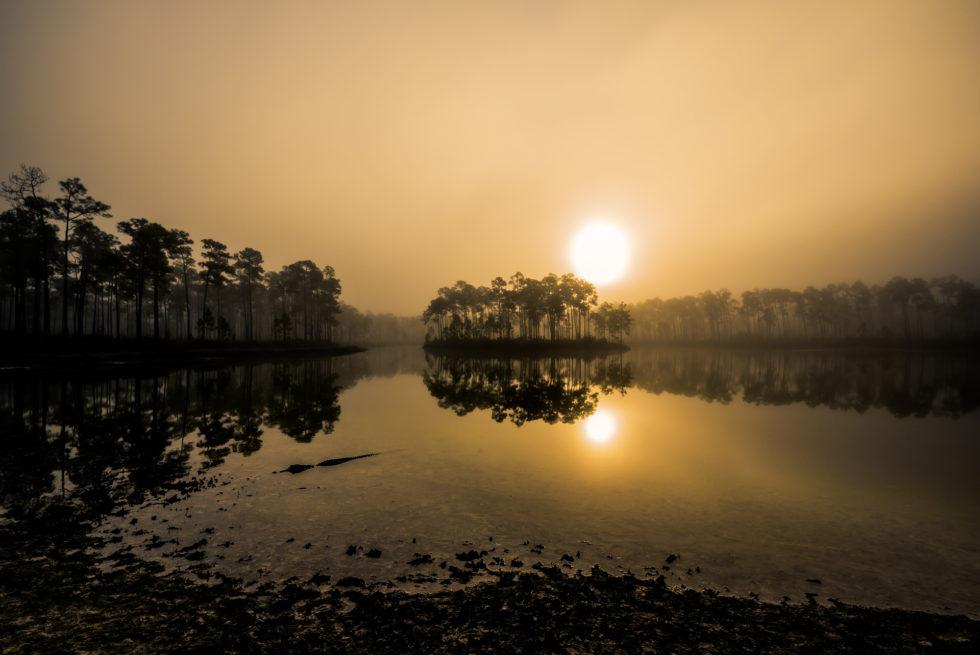 FL Sunrise #2