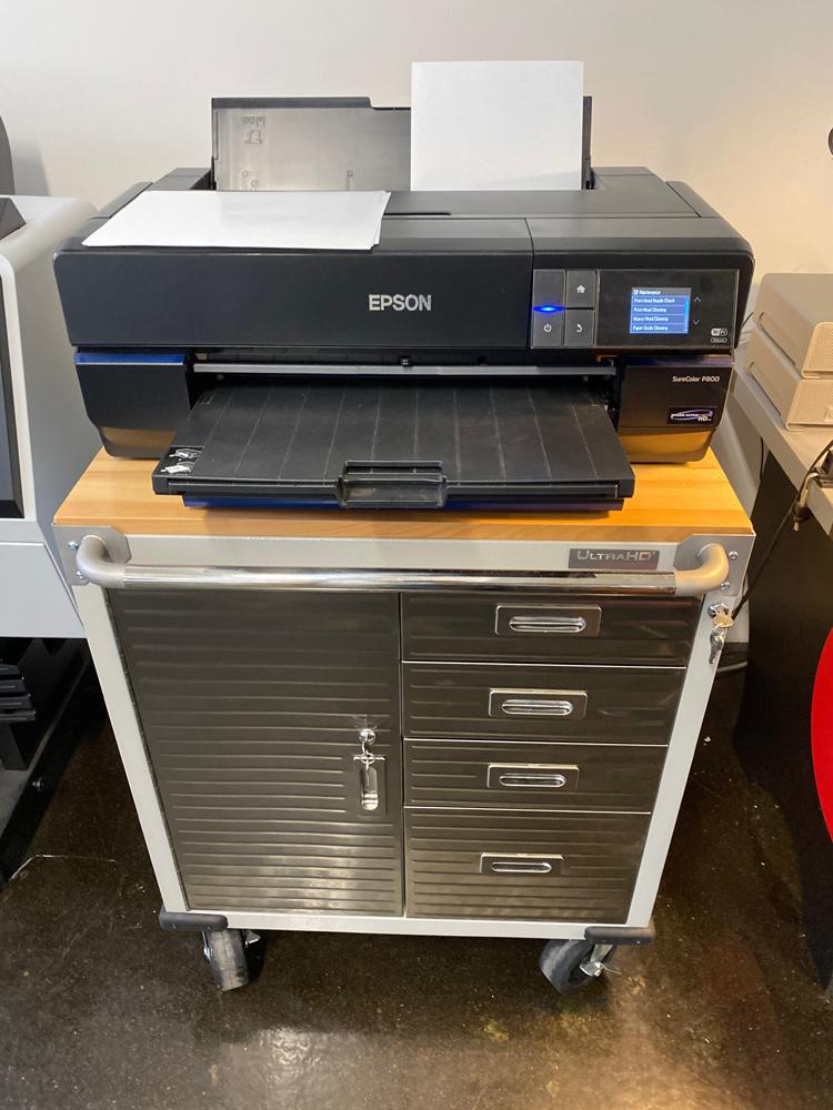 The Epson P800