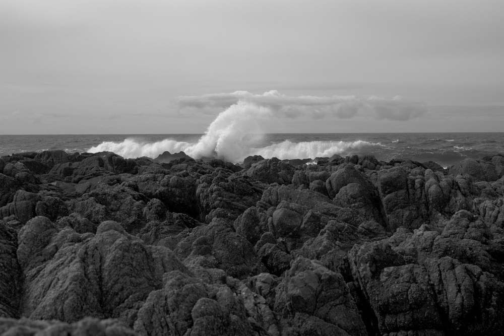 Asilomar Wave