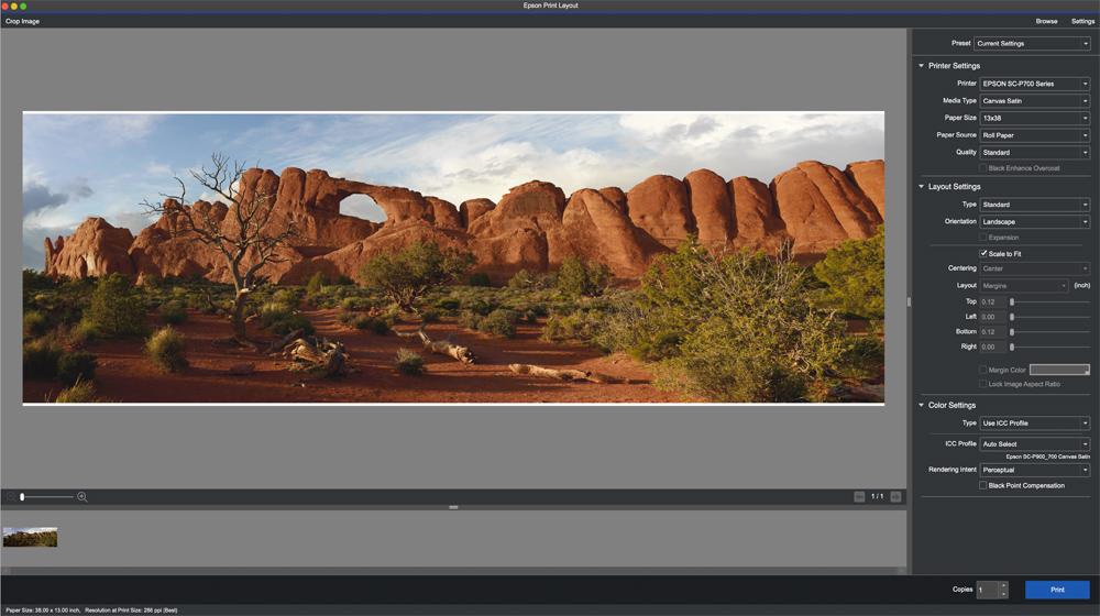 Epson print layout set to print a panorama print