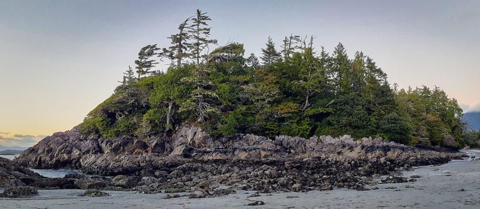 Island (low tide)