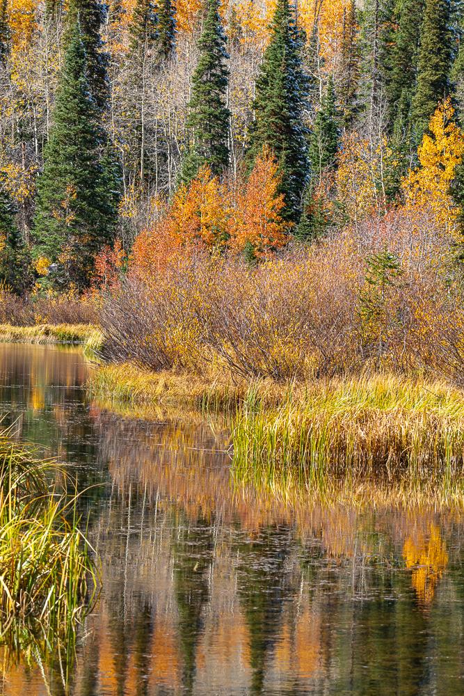 Autumn Reflections, UT