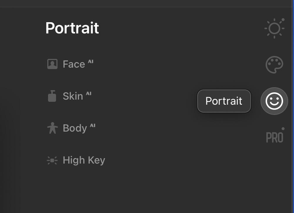 The Portrait Panel
