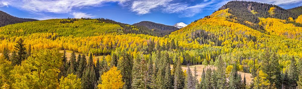Castle Creek Vista, Aspen, CO, 2013