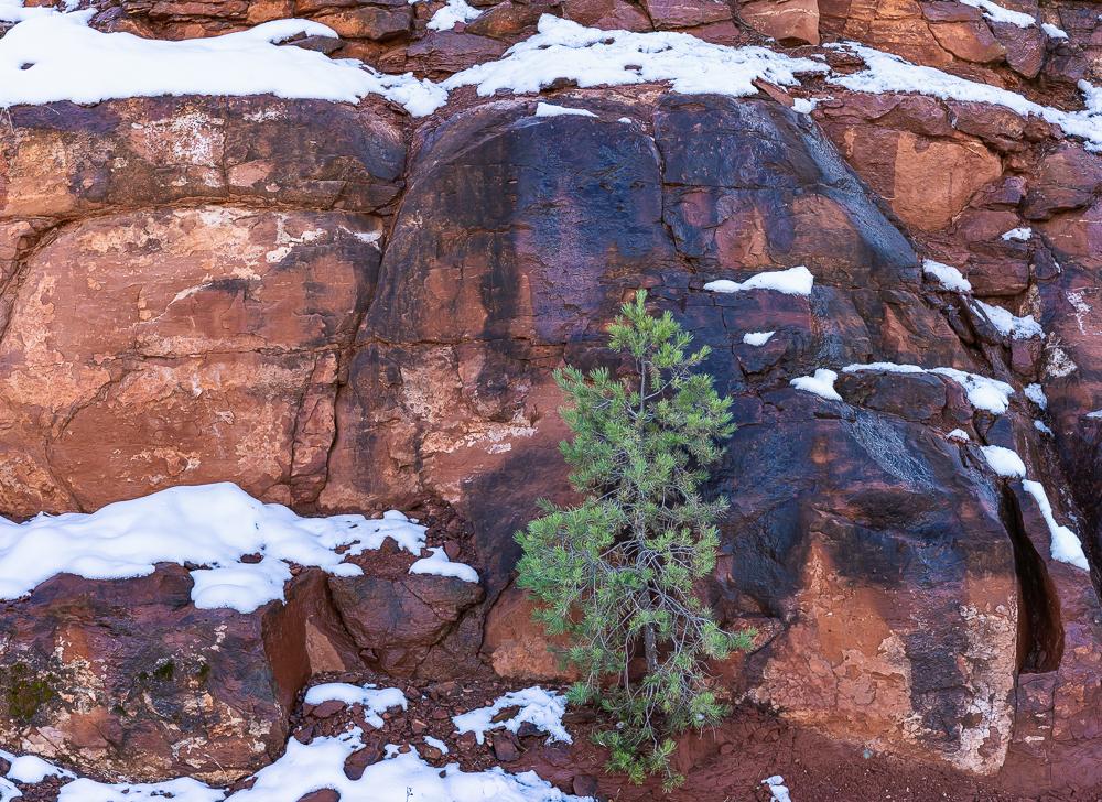 "Red Rockface After a Snowfall"", 4x3 Array"