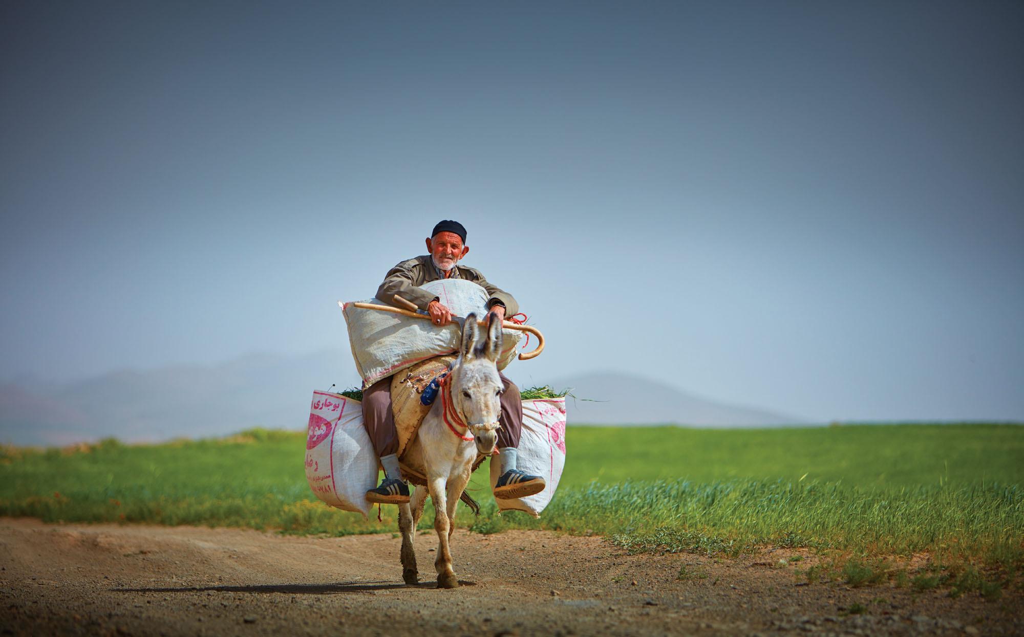 Farmer near Hamadan, Iran. Canon EOS 5DSR, Canon 70-200mm f2.8, f2.8 @ 1/4000 second, ISO 100.