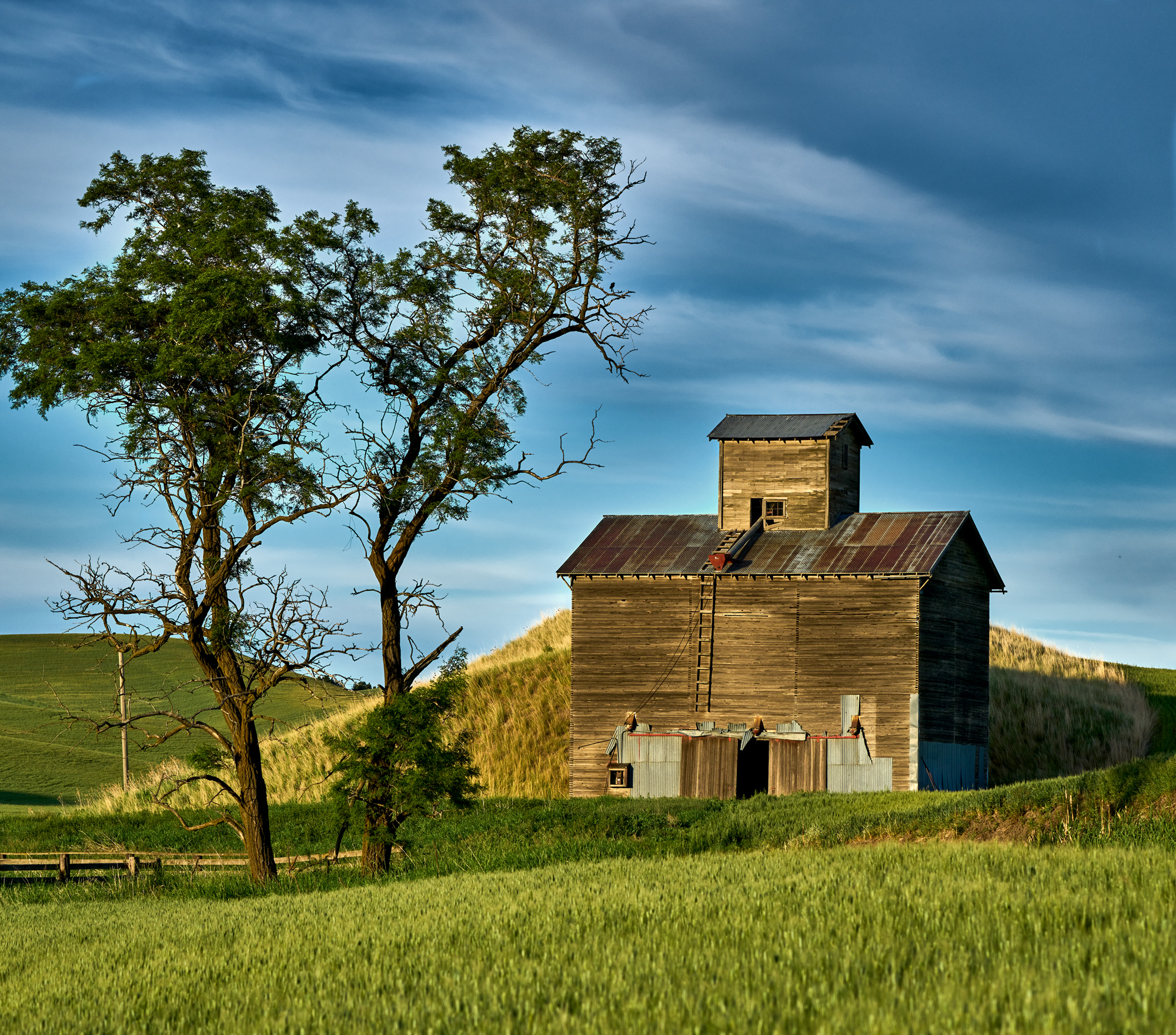 The evening light was perfect for the grain silo photo