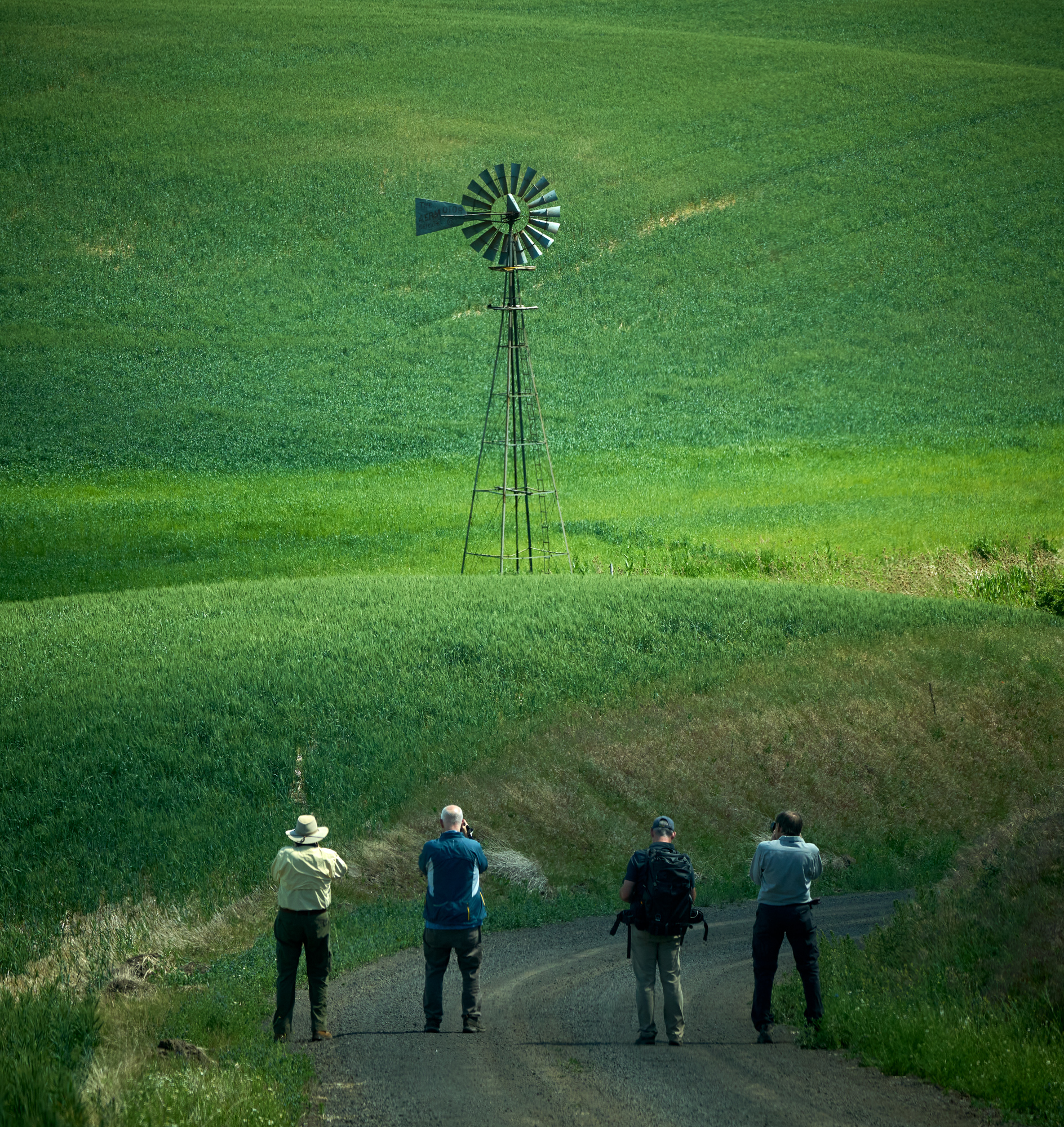 The four attendees of the workshop working on a windmill image