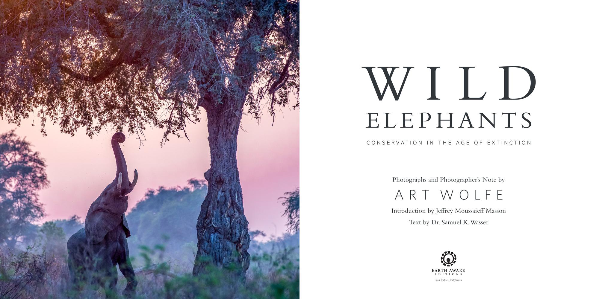 Wild elephants Book