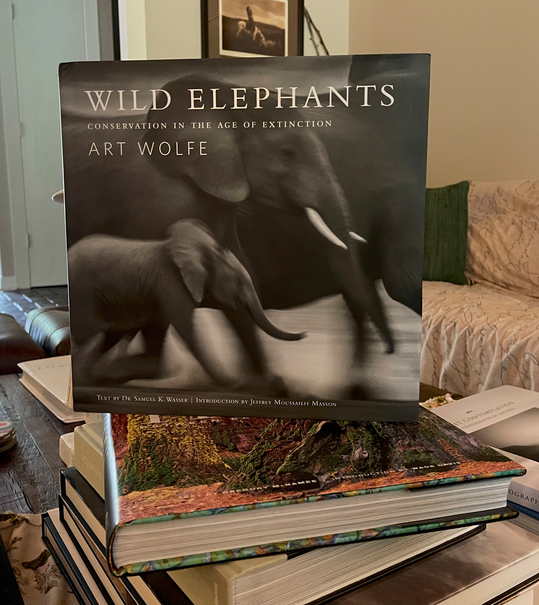 My coffee table and Art's wild Elephant book