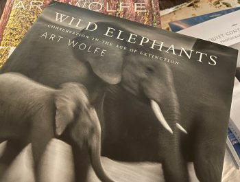 Wild Elephants – Conservation In The Age Of Extinction – Book Review