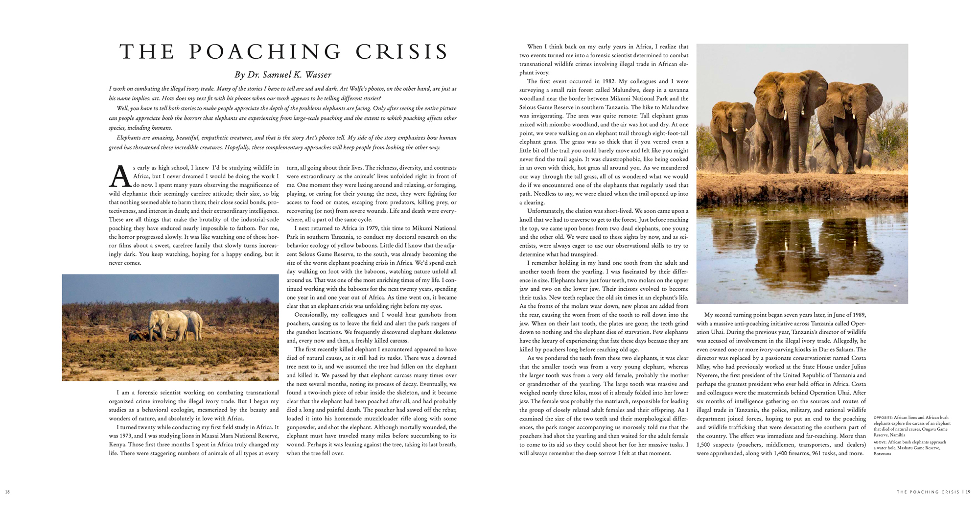 The Poaching Crisis - A must read