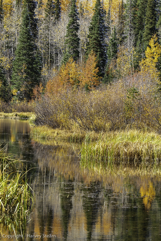 Silver Lake Reflections 1