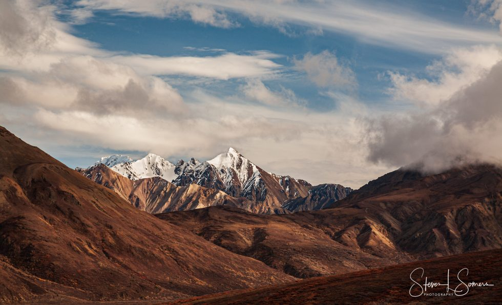 Denali National Park Afternoon Landscape View