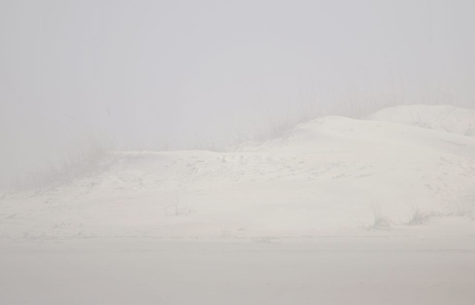 Foggy Dune