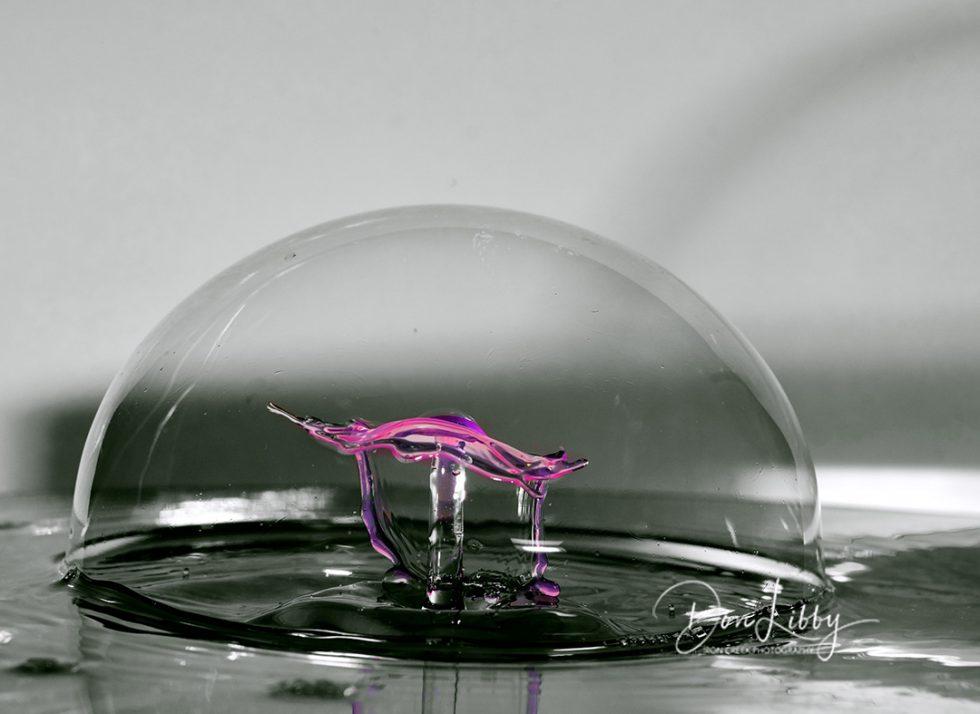 Inside the bubble part II