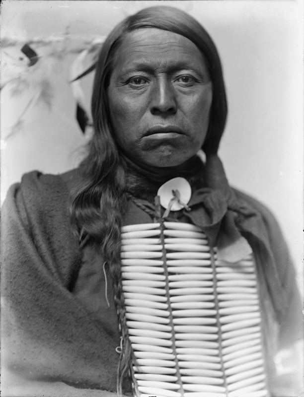 Chief Flying Hawk, by Gertrude Käsebier
