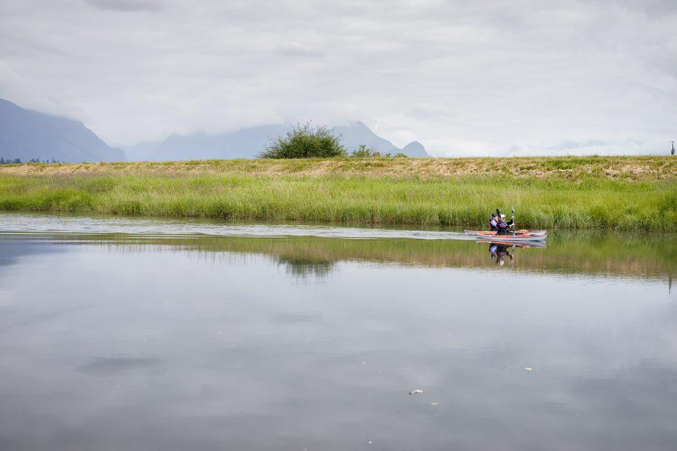 Kayaks and a Heron