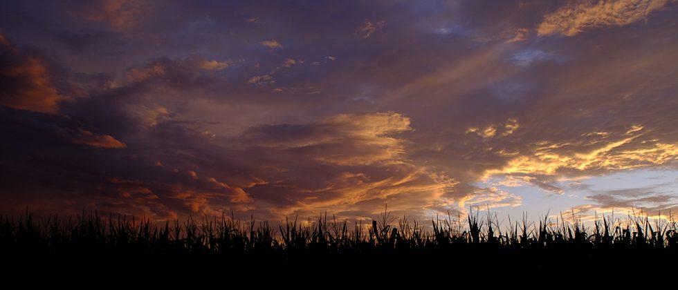 Indiana Sunset 2