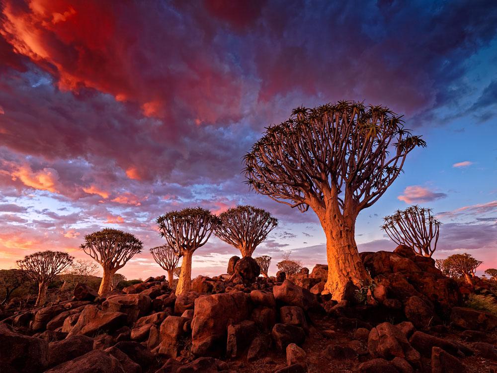 Namibia Morden O'Hare