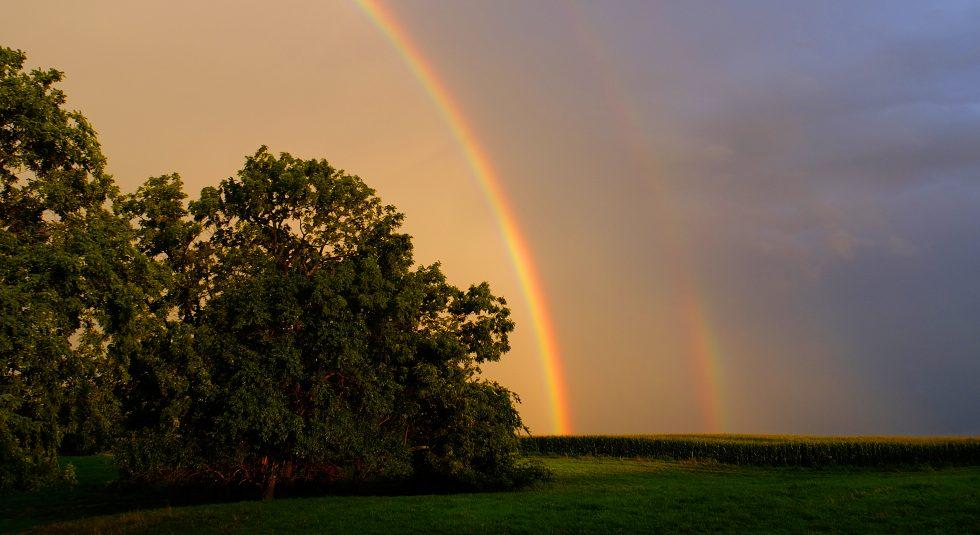 Indiana Rainbow1