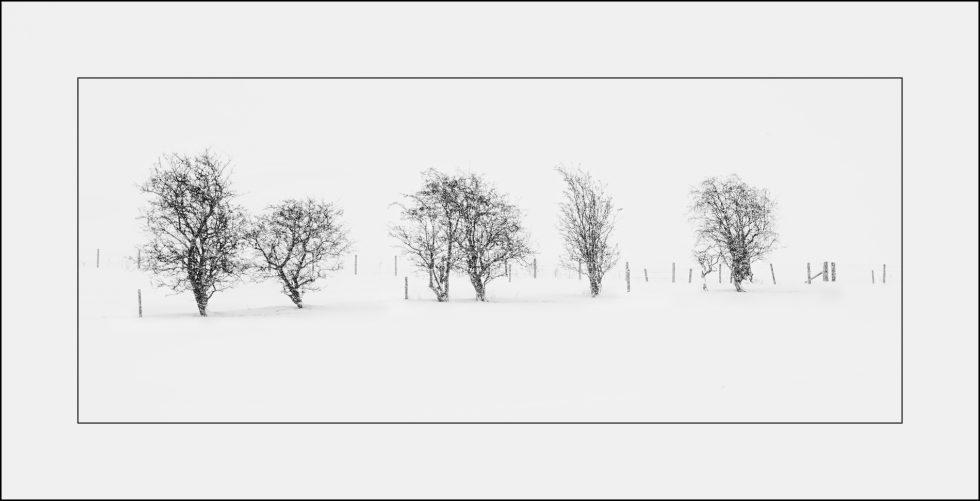 Minimalist snow