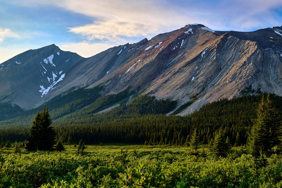 Banff 7