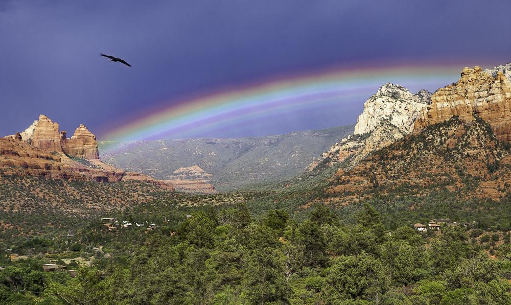 Raven & unusual rainbow above a cloudless Mogollon Rim