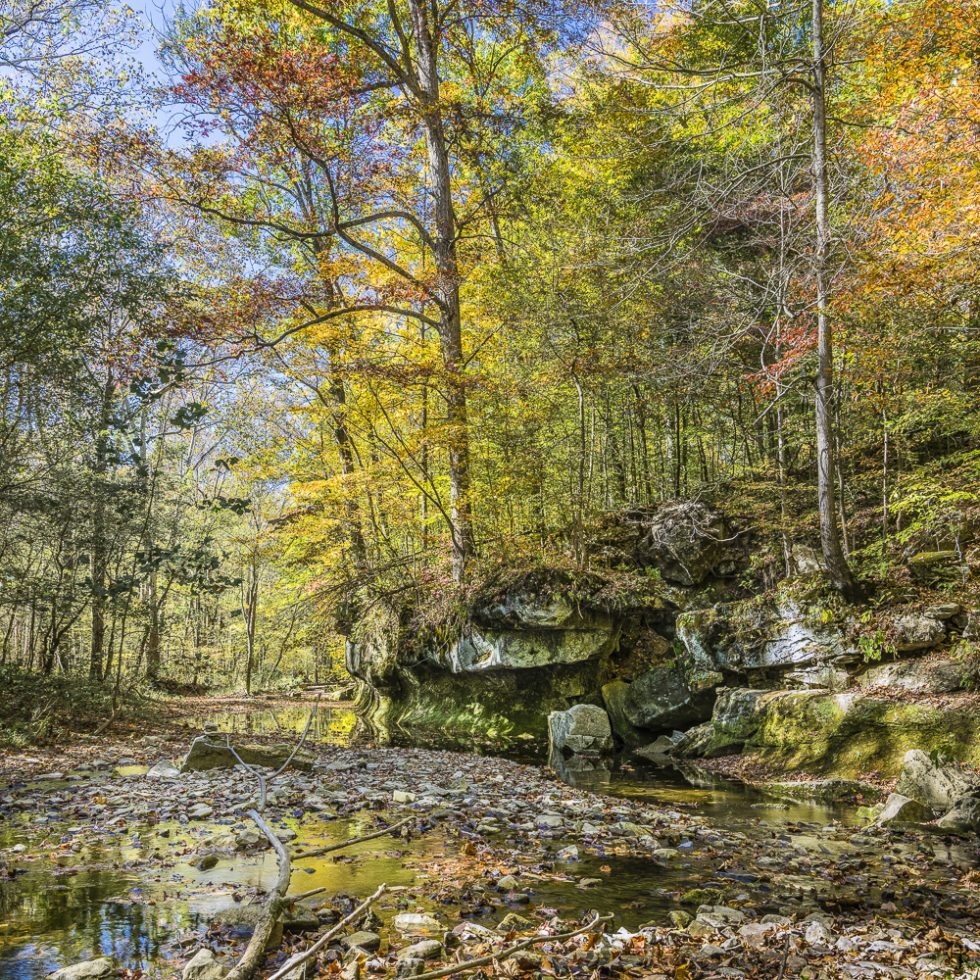 Fall on McCormicks Creek
