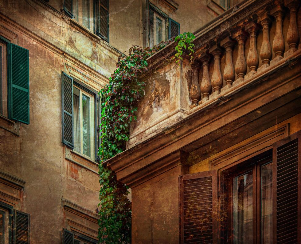 Vines and Shutters