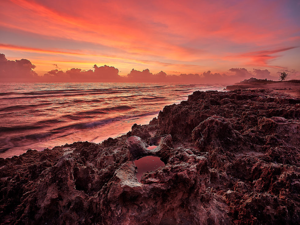 FL Sunrise #1