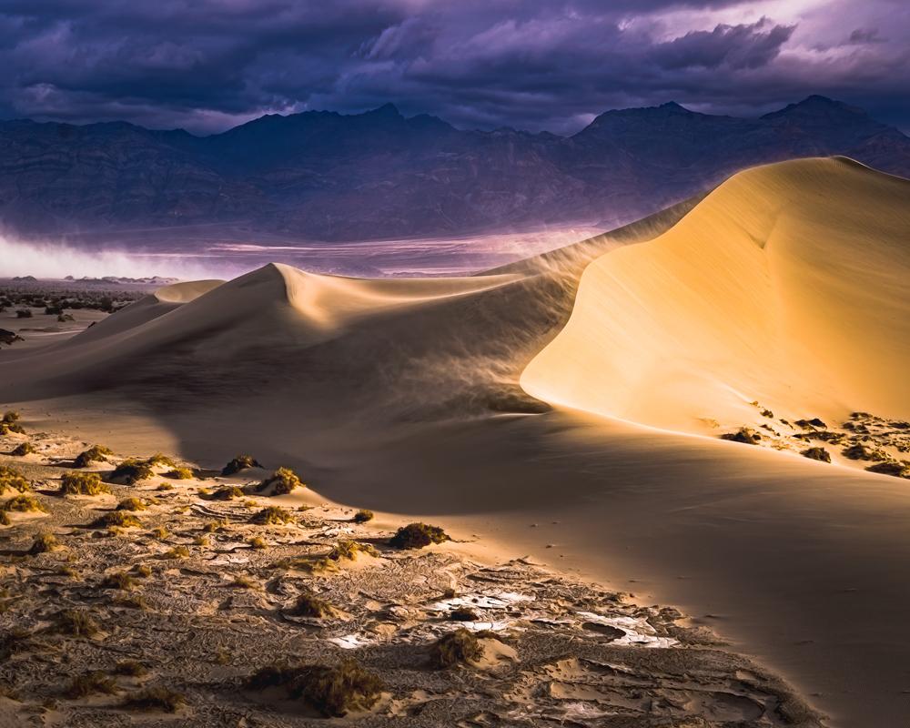 Mesquite Dunes -Gary Peterson