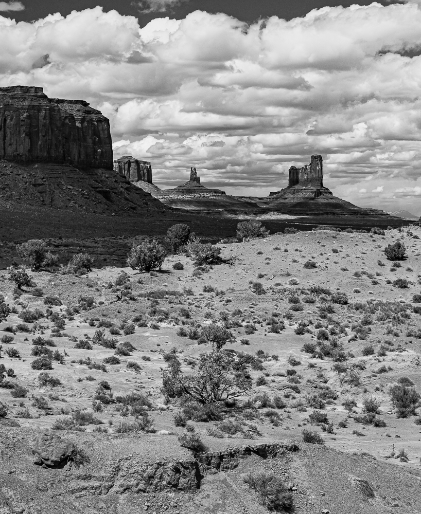 """Mitten Monuments, May 2010"""""""