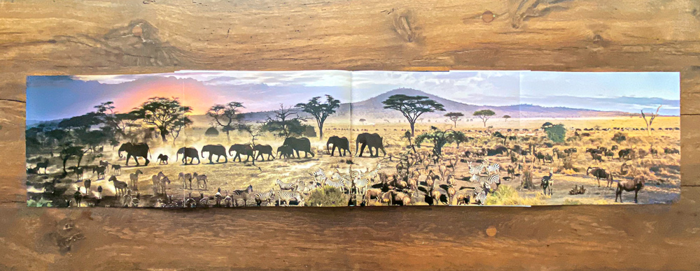One of many multipage gatefolds, this one is a detail of the Serengeti Day-to-Night image.