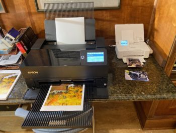 Epson P700 Print At Home – Print Them Out! No Excuses