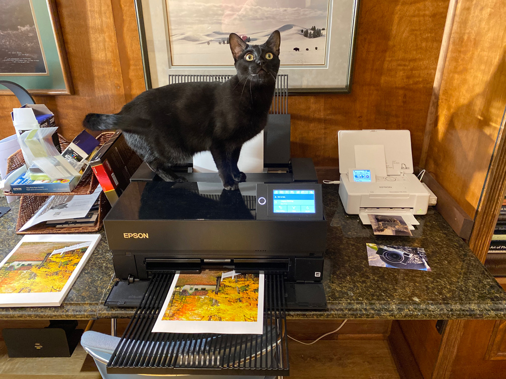 I have an area on my desk where my two printers sit. The Epson P700 and PictureMate 400