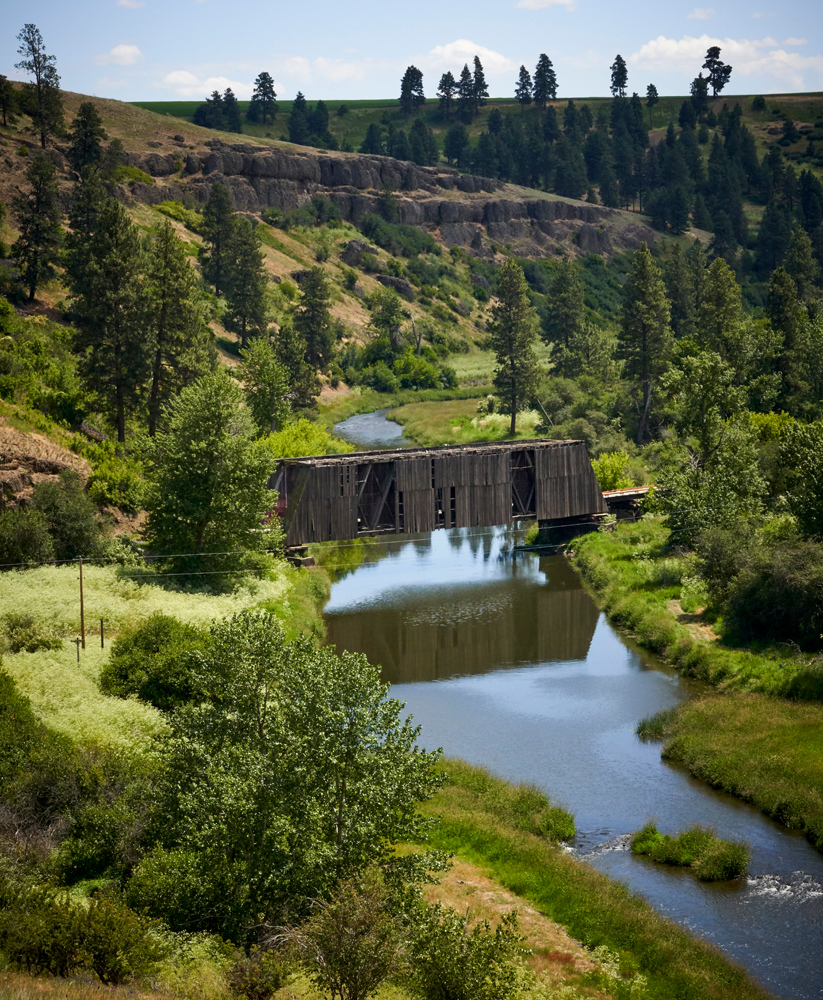 This wooden bridge was destroyed in the fires that swept up through this canyon. While green in this photo since it was shot in June. The Palouse becomes very dry in late summer.