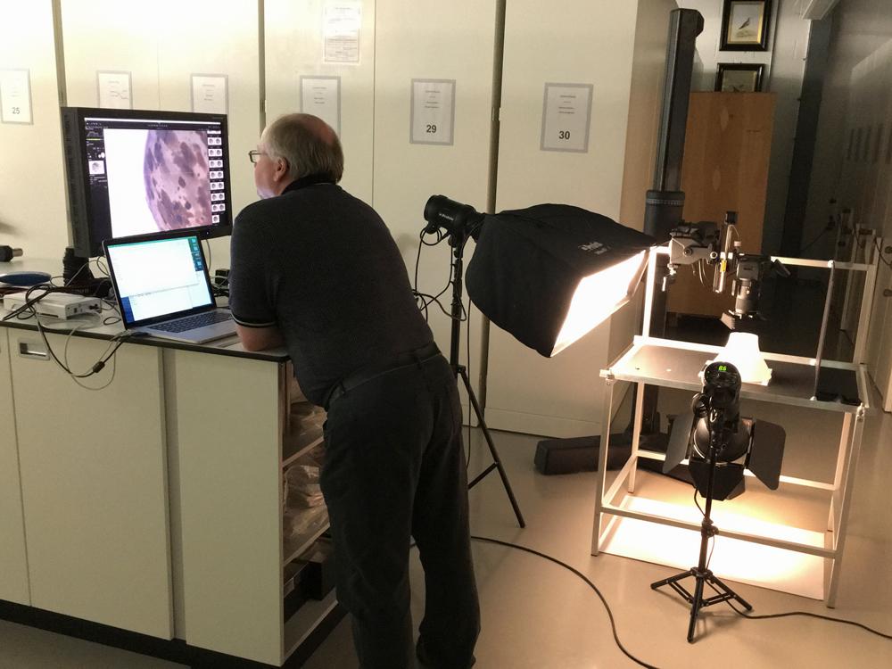 Derek Rattray watches images downloading, Museums of Scotland, Edinburgh.