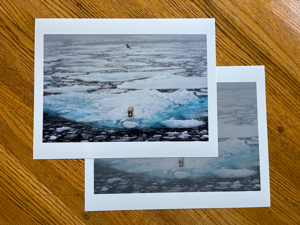The RAW and final image on inspection prints