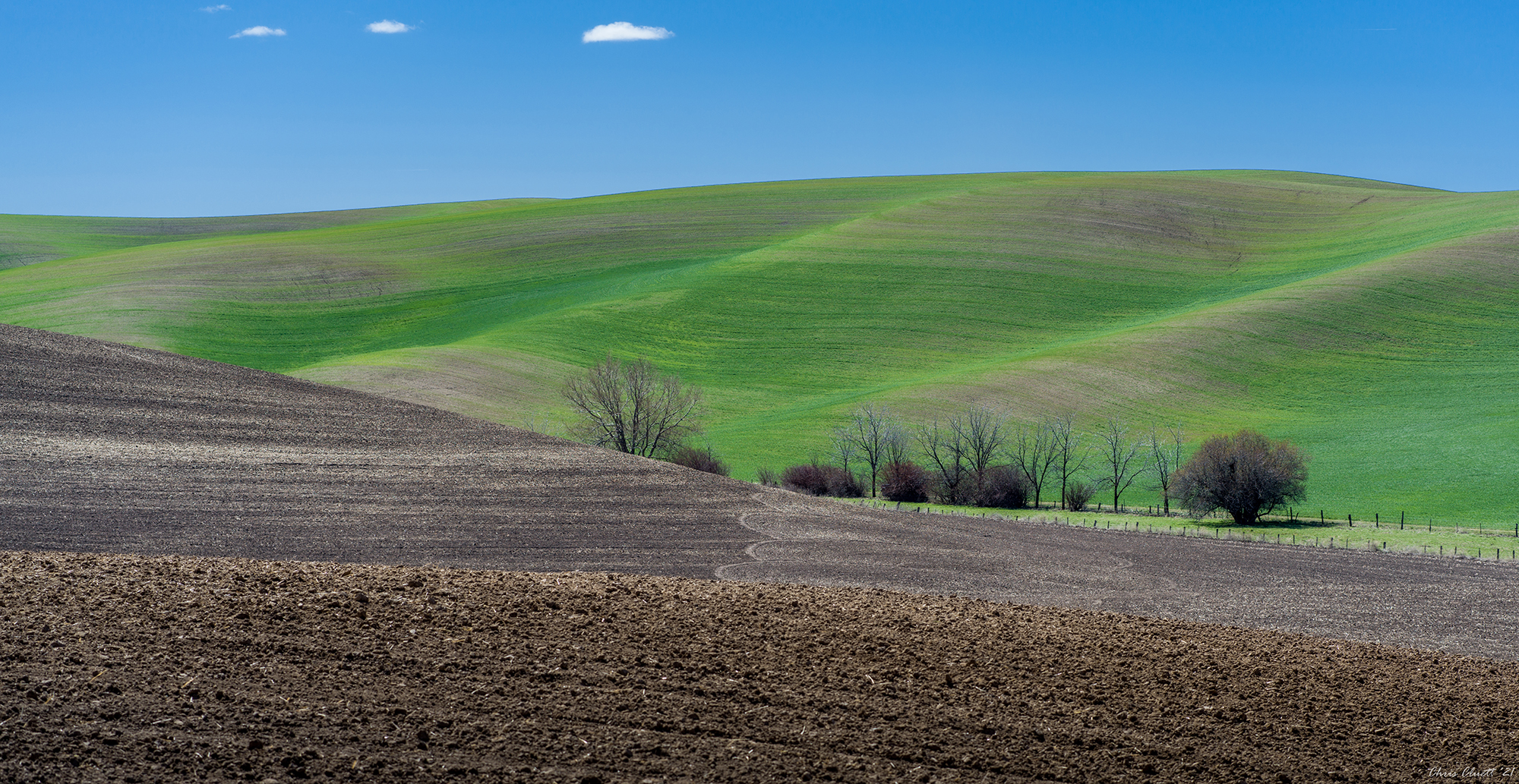 Soft colors just emerging from a monochrome winter dormancy; earth tones with patterning in the tilled soil; natural and manmade lines and shapes document the early spring Palouse landscape.