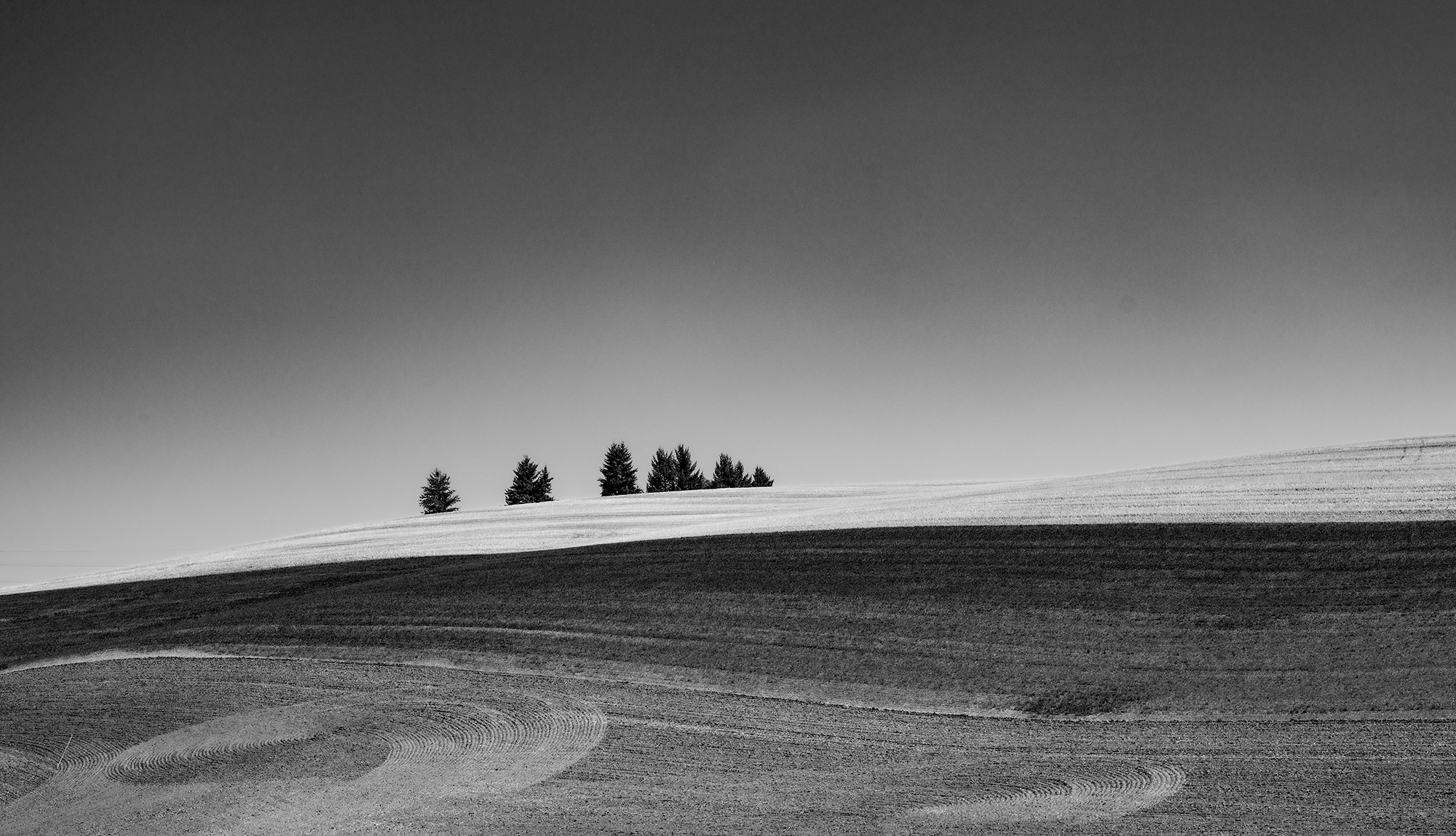 Monochrome focuses the viewer's attention on the flow of the landscape and the artistic patterns created by the farming of the soil.